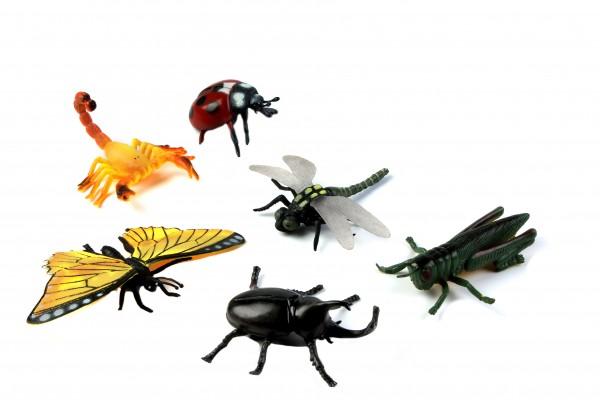 BUSTE ANIMALI - insetti